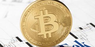 Bitcoin Investment Portfolio Vaneck
