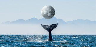 Ripple Crypto Whale