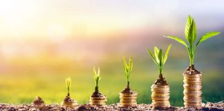 growth stocks investing