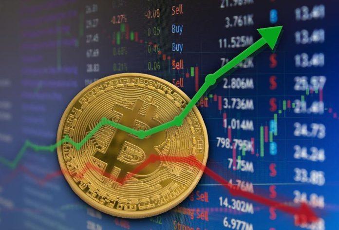 Bitcoin Network Metrics