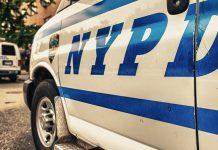 Crypto Scam New York