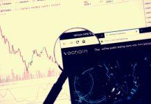 Crypto Asset VeChain