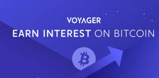 Crypto Broker Voyager Could Soon Pay Interest to Tether USDC Holders