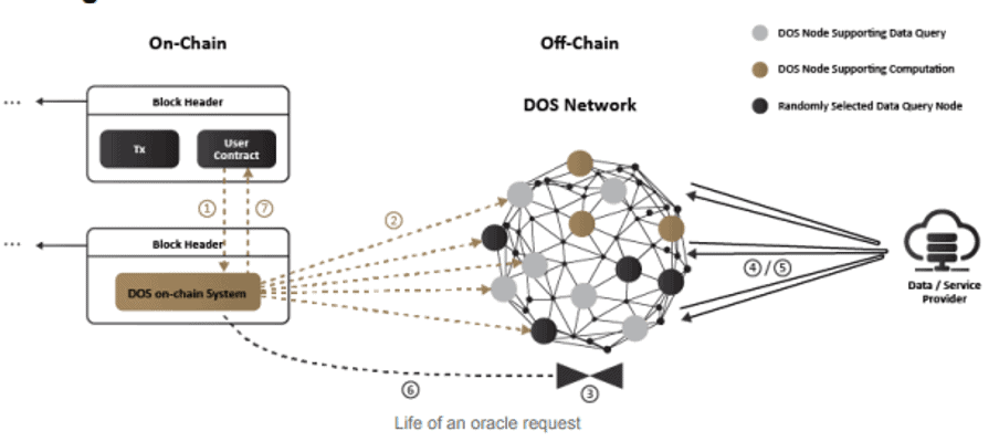 DOS Network Key Components