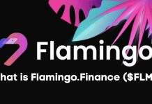Flamingo Finance provide everything a DeFi user needs in one swipe. The project is also built on the NEO blockchain