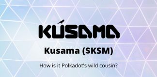Kusama is Polkadots canary network which means that it is an experimental community research and development protocol