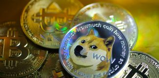 DOGE or Dogecoin is a crypto that came into existence in honor of a 'doge' meme of the same name