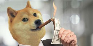 Dogecoin price rallied more than 500