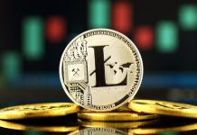 Litecoin price has been rejected from the 300 price level